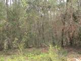 0 Live Oak Dr - Photo 6