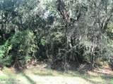 114 Sabal Palm Dr - Photo 5