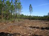 LOT 11 Old Dixie Hwy - Photo 1