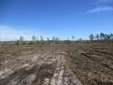 LOT 55 Old Dixie Hwy - Photo 2