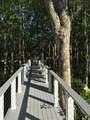 3119 Tuesdays Cove - Photo 4