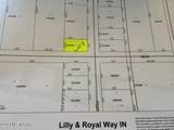 00 Lily And Royal Way - Photo 1