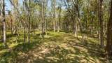1500 Peters Creek  Lot #4 Rd - Photo 1