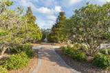 111 Nature Walk Pkwy - Photo 25