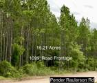 0 Pender Raulerson Rd - Photo 4