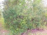 226 Pheasant Rd - Photo 1