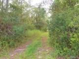 228 Pheasant Rd - Photo 1