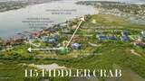 115 Fiddler Crab Ln - Photo 2