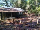 6058 Co Rd 214 - Photo 3