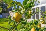 1713 Kayla Ct - Photo 51