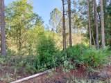 2863 Royal Palm Dr - Photo 5