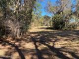 000 Long Branch Trail - Photo 4