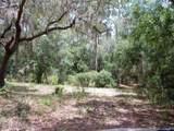 101 Gator Trail - Photo 3