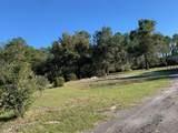 219 Ponderosa Pine Ct - Photo 7