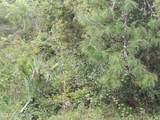 110 Mimosa Pl - Photo 1