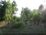 34492 Mitigation Trl - Photo 2