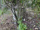 430 Cedar Creek Rd - Photo 11
