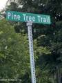 238 Pine Tree Trl - Photo 1