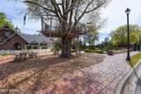 3945 Royal Pines Dr - Photo 49