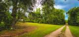 6669 Bramble Hedge Ln - Photo 21