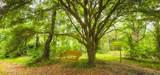 6669 Bramble Hedge Ln - Photo 25