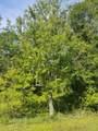 800 Ridgeline Rd - Photo 5