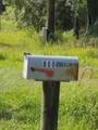 800 Ridgeline Rd - Photo 6