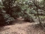 8093 Cactus Hill Dr - Photo 12