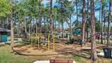 2233 Seminole Rd - Photo 13