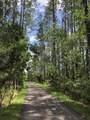 608 Palmetto Walk - Photo 18
