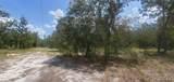 6426 Golden Oak Ln - Photo 2