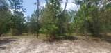 6426 Golden Oak Ln - Photo 5