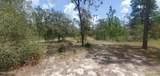 6426 Golden Oak Ln - Photo 6
