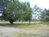 1741 Blue Jay Dr - Photo 2