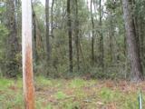 0 Live Oak Dr - Photo 9