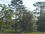 5730 County Road 214 - Photo 4