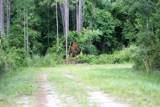 5136 Cattail St - Photo 7