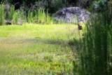 5136 Cattail St - Photo 8