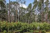 278 Kiwi Palm Ct - Photo 67