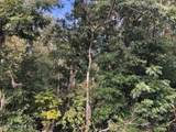 5 Wilderness Trl - Photo 2