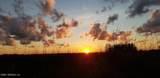 825 Kalli Creek Ln - Photo 40