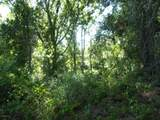 TBD Moccasin Creek Ln - Photo 6