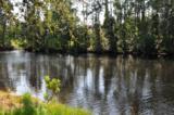 4450 Timber Hollow Way - Photo 47