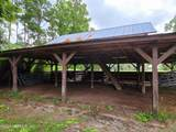 31202 Co Rd 121 - Photo 20