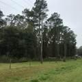 000 County Road 309 - Photo 6