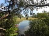 137 Marshall Creek Dr - Photo 1