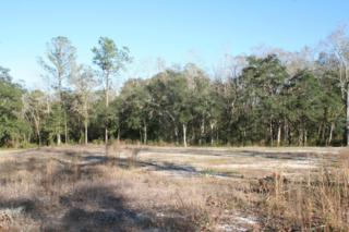 15460 Bullock Bluff Rd, Bryceville, FL 32009 (MLS #868405) :: EXIT Real Estate Gallery