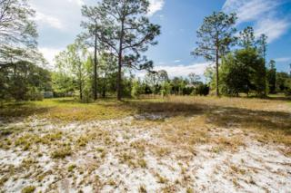 3506 Havenwood Rd, Middleburg, FL 32068 (MLS #878876) :: EXIT Real Estate Gallery