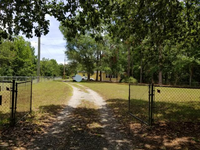 6790 Wheat Rd, Jacksonville, FL 32244 (MLS #1000287) :: The Hanley Home Team