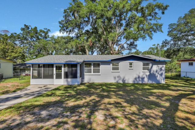 309 Canis Dr W, Orange Park, FL 32073 (MLS #1001400) :: The Hanley Home Team